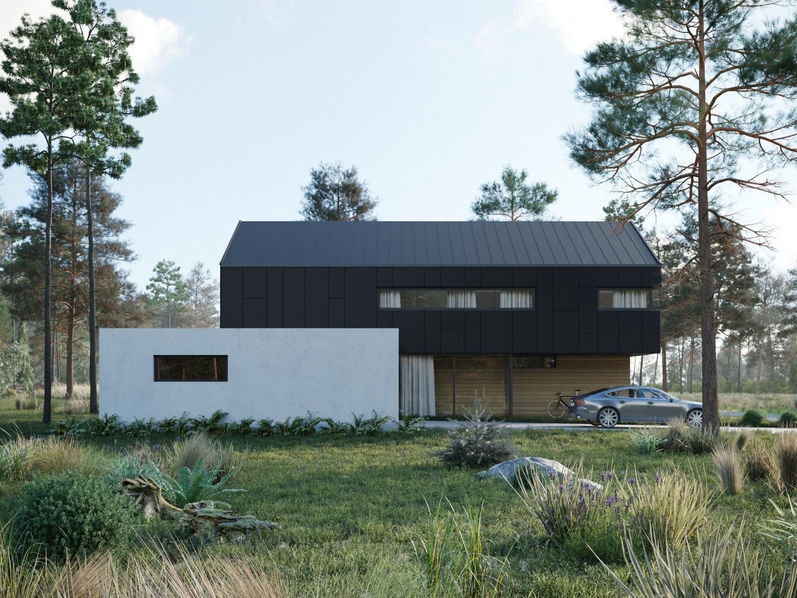 Visualization of a Black&White Home