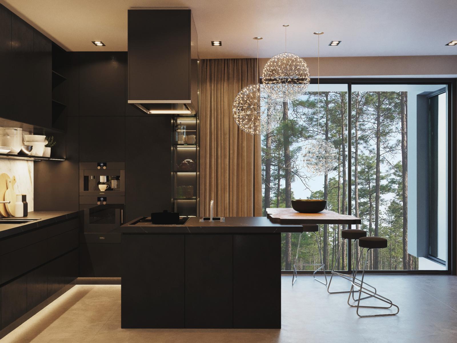Luxury Kitchen in Black